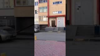 Котика забыли...аааа))))