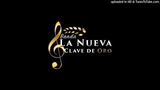 Banda La Nueva Clave De Oro - El Corrido Del Sinaloense (En Vivo)