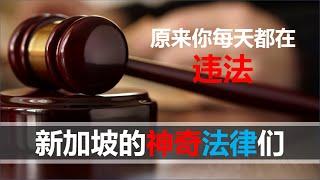 【2020第十三期】新加坡的九个神奇法律,有的是男人都会犯的错,政府是如何保证人民遵守严格法律呢