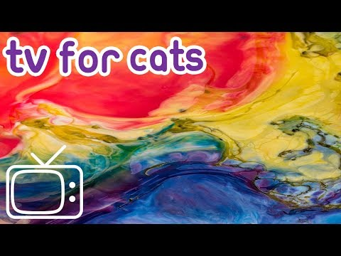 Cat TV: 8 Hours of stimulating abstract footage to entertain your cat!