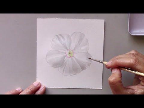 White Periwinkle Flower in Watercolor 78/100   Siti Nuriati Husin
