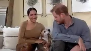 video: Prince Harry and Meghan call to end 'structural racism' in Britain