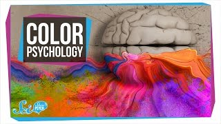 Does Color Really Affect How You Act?