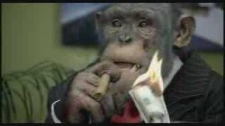 CareerBuilder.com: Monkey Business (Up   Down Profitability)