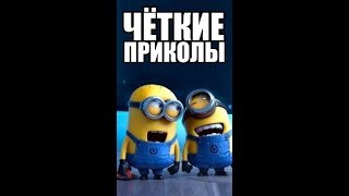 Чёткие  приколы )) Посмотри ))