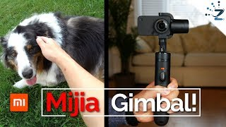 Xiaomi Mijia 4K Gimbal Review - Tested at 100m running speed!