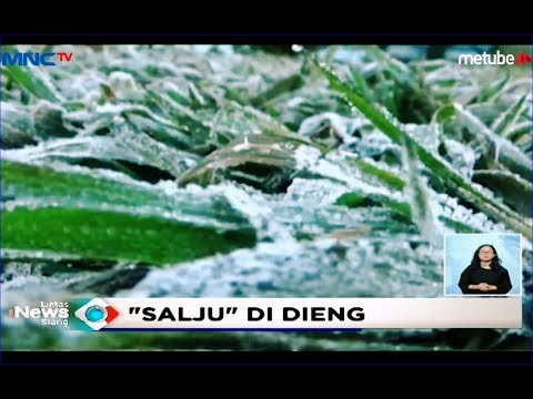 Suhu Minus 2 Derajat, Salju Musiman Kembali Turun di Dieng - LIS 19/06