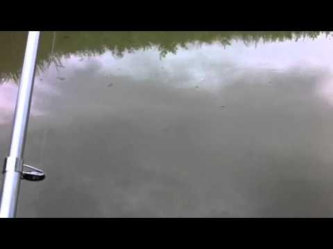La pesca in Urals in video di Kazakhstan