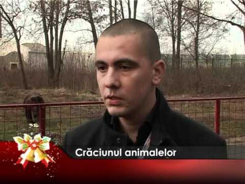 Crăciunul animalelor