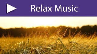 3 HOURS Instrumental Emotional Music, Relaxation Meditation Music to Clear Your Mind