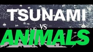 Martin Garrix Animals Vs DVBBS Tsunami