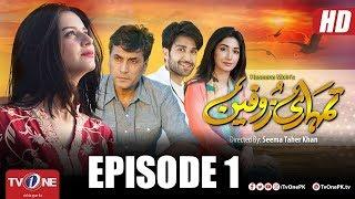 Tumhari Zofeen | Episode 1 | TV One Drama | 28 June 2018