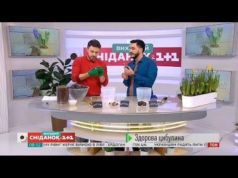 Павло Дем'янчук, відео 1