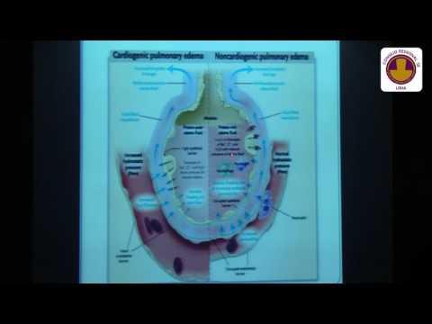 Hipertensión. clasificación de la OMS