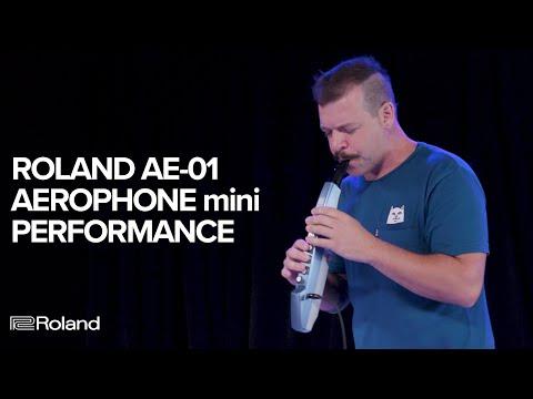 כלי נשיפה לנשיאה בכיס? ה-AE-01 Aerophone mini של רולנד בהדגמה