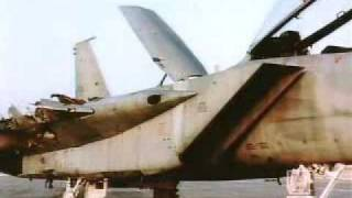 Israeli Air Force Pilot lands F-15 with one wing