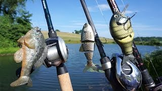 Fishing BIG Swimbaits in a Small Pond?
