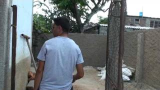 preview picture of video 'Florida, Camaguey, Cuba.  Need lots of work'