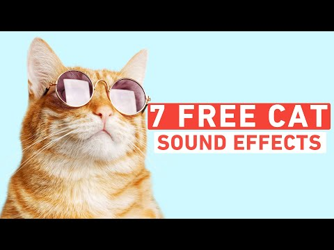 Over 440 FREE Sound Effects for Videos, Apps, Films, and Games