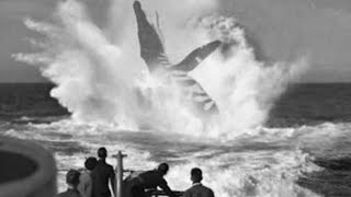 5 Wartime Monsters Caught On Camera & Spotted In Real Life!