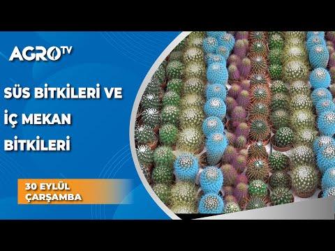 , title : 'Peysaj İçerikli Süs Bitkileri ve İç Mekan Bitkileri / Bitki Uzmanı - Agro TV