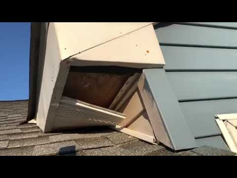 Recently, I got a call from a homeowner in Point Pleasant, NJ who had an issue with raccoons. This job was a unique one because the homeowner told me that they actually had put up a piece of plywood by the entry point to block off all raccoons. What was wrong, is they didn't place the plywood all the way to the end and left a gap in the entry point — so raccoons were STILL getting in. What's worse is, now the raccoons actually recognize that someone is trying to prevent them from re-entering their new home and are more cautious about their surroundings.  This is a prime example of why you should always use a professional when it comes to pest removal. By attempting to fix the situation yourself, you could make the situation more dangerous for yourself and potentially cause a bigger issue than you originally had. Luckily, we have come across this situation before and know exactly what to do. 