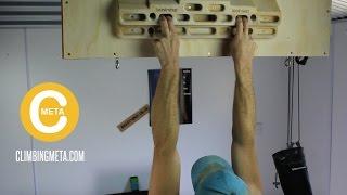 Beginner Fingerboard Training Program