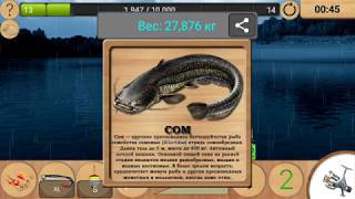 Как поймать сома на реке мокша