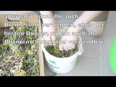 Pflanzendünger selber herstellen - Jauche ansetzen