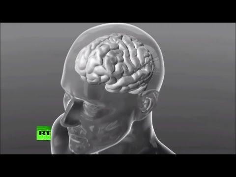Первый шаг в «Матрицу»: ученые нашли способ соединить мозг и компьютер