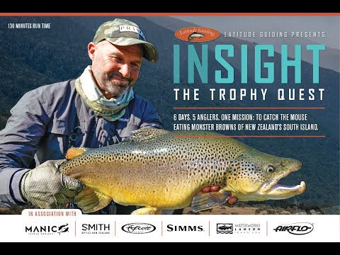 Insight- The Trophy Quest