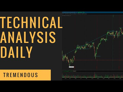 Interactive Brokers [TWS] Tutorial #1