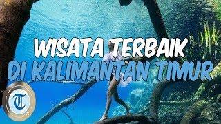 8 Tempat Wisata di Kalimantan Timur untuk Liburan Akhir Pekan, Cobain Snorkeling di Pulau Maratua