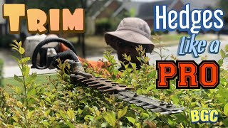 How to trim hedges like a PRO. Hedge trimming tips, plus crepe myrtle bush pruning