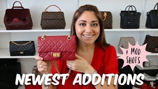 NEWEST ADDITIONS TO MY COLLECTION | CHANEL, FURLA, GUCCI | Minks4All