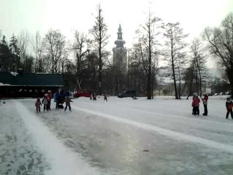 Schlittschuhlaufen, Eistockschießen, Eishockey