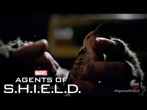 Marvel's Agents of S.H.I.E.L.D. 3.15 (Clip 2)