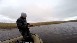 Рыбалка астраханская область тишково