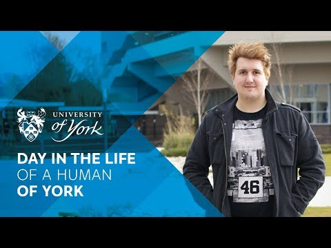 A day in the life of a Human of York