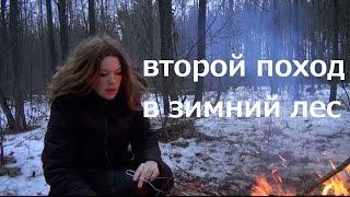 Поход в зимний лес 2 / Странный поход