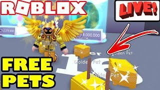 Pet Simulator giveaway free rainbow pet and road to 350 - hmong video