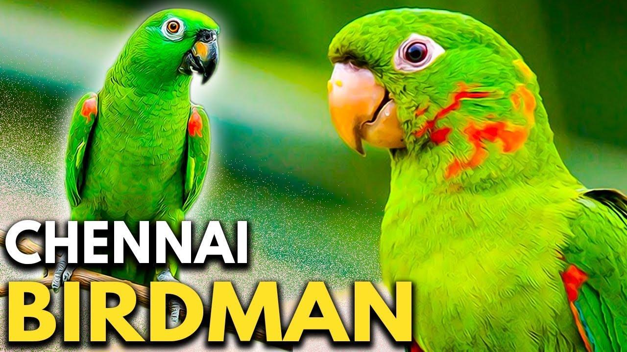 Chennais Pakshirajan | Real Birdman Joseph Sekar Interview