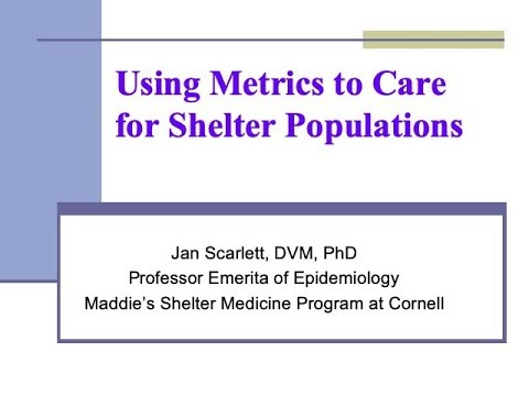 Using Metrics to Care for Shelter Populations (for LVTs) - conference recording