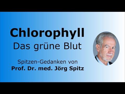 Tratamentul bolilor artrozei și coxartrozei