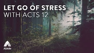 Abide Guided Bible Story Sleep Talk Down Let Go of Stress & Anxiety & Fall Asleep to Acts 12