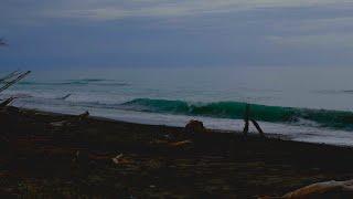 Relaxing OCEAN WAVES Sound & DARK SCREEN at 5mins to Sleep, Relax, Study | Sound of Ocean Waves 10hr