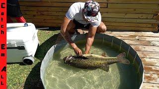 SHAMU FINALLY RETURNS! **MY BIGGEST FISH By WEIGHT in DOG POND!**