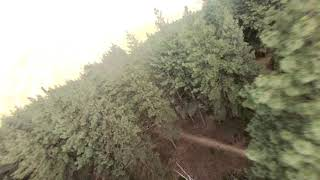 Pine Valley FPV Freestyle
