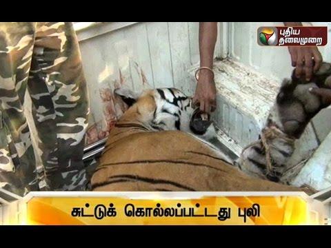 Speed-News-19-03-2016-Puthiya-Thalaimurai-TV