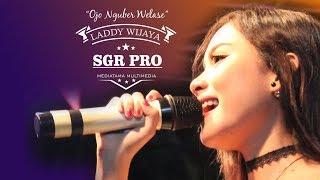 Ojo Nguber Welase   LADDY WIJAYA (SGR Pro)